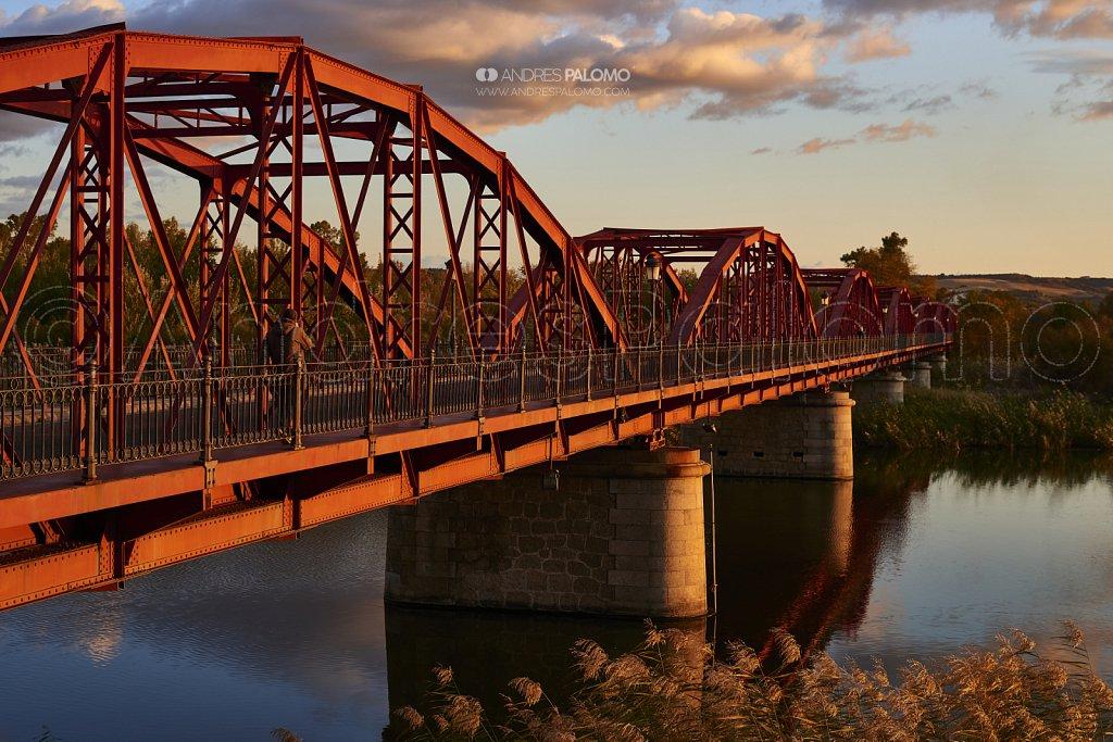 Puente Reina Sofía