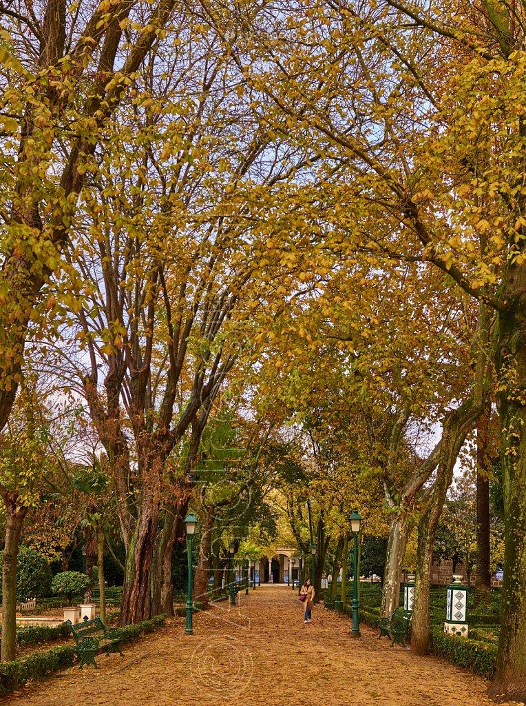 Otoño, Jardines del Prado